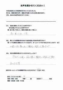 池田アンケート20151113